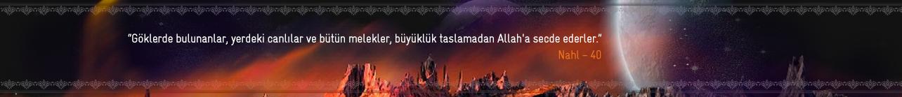 Kur'an-ı Kerimden Ayetler